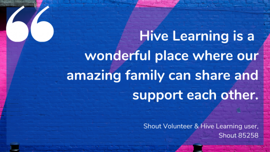 Hive Learning is a wonderful place where our amazing family can share and support each other. Shout Volunteer & Hive Learning user, Shout 85258